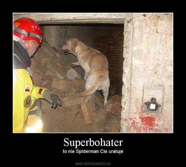 Superbohater – to nie Spiderman Cie uratuje