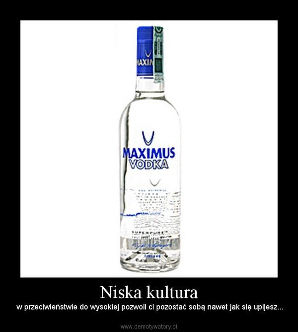 Niska kultura –  w przeciwieństwie do wysokiej pozwoli ci pozostać sobą nawet jak się upijesz...