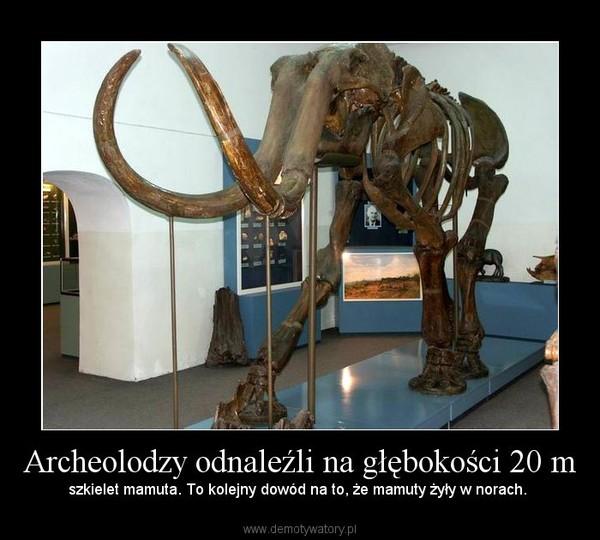 Archeolodzy odnaleźli na głębokości 20 m – szkielet mamuta. To kolejny dowód na to, że mamuty żyły w norach.