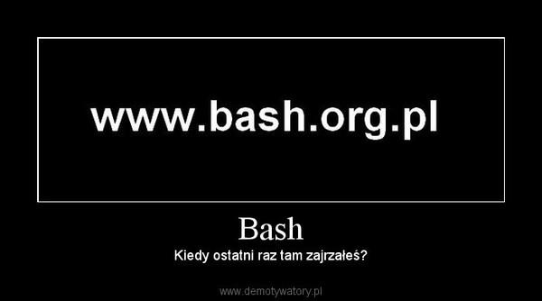 Bash – Kiedy ostatni raz tam zajrzałeś?