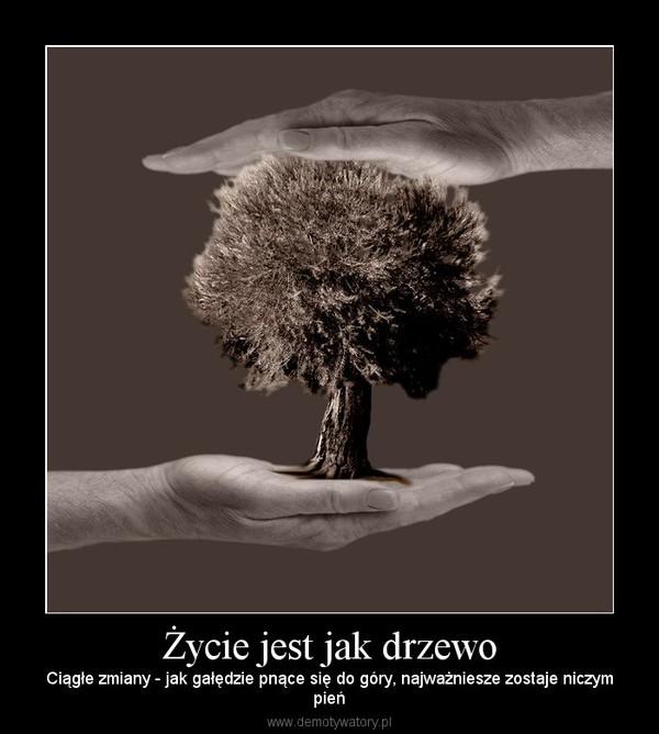 Życie jest jak drzewo – Ciągłe zmiany - jak gałędzie pnące się do góry, najważniesze zostaje niczympień