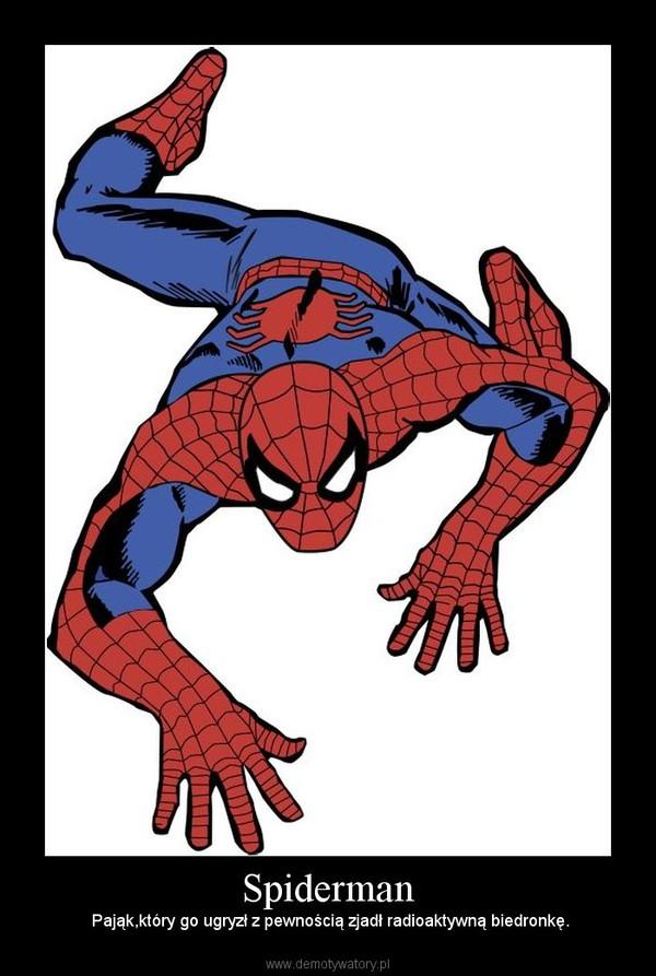 Spiderman –  Pająk,który go ugryzł z pewnością zjadł radioaktywną biedronkę.