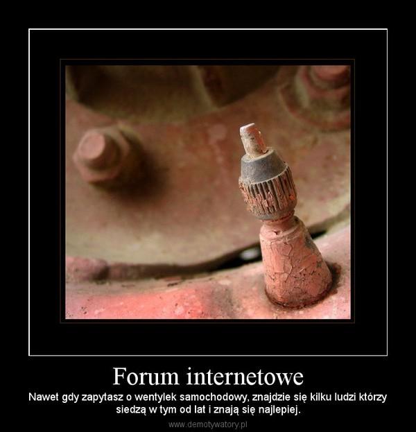 Forum internetowe – Nawet gdy zapytasz o wentylek samochodowy, znajdzie się kilku ludzi którzysiedzą w tym od lat i znają się najlepiej.