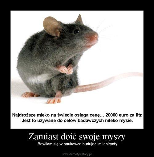 Zamiast doić swoje myszy