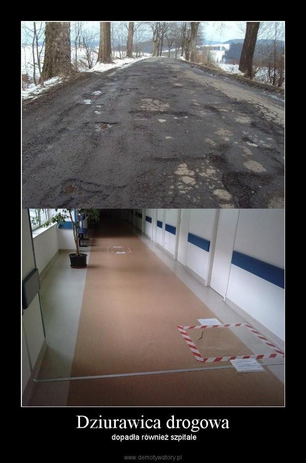 Dziurawica drogowa –  dopadła również szpitale