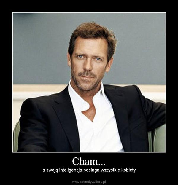 Cham... –  a swoją inteligencja pociaga wszystkie kobiety
