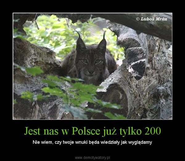 Jest nas w Polsce już tylko 200 – Nie wiem, czy twoje wnuki będa wiedziały jak wyglądamy