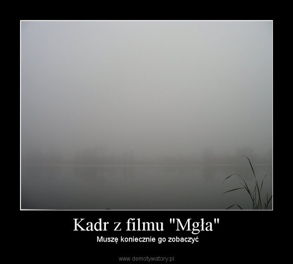 """Kadr z filmu """"Mgła"""" – Muszę koniecznie go zobaczyć"""