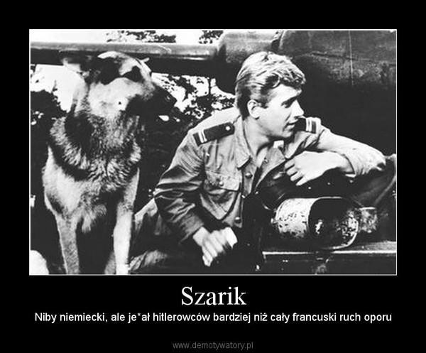 Szarik – Niby niemiecki, ale je*ał hitlerowców bardziej niż cały francuski ruch oporu