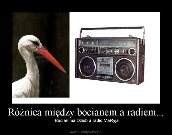 Różnica między bocianem a radiem... – Bocian ma Dziób a radio MaRyja