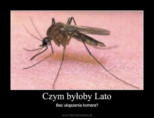 Czym byłoby Lato – Bez ukąszenia komara?