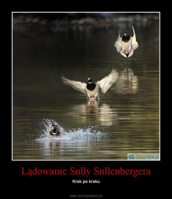 Lądowanie Sully Sullenbergera – Krok po kroku
