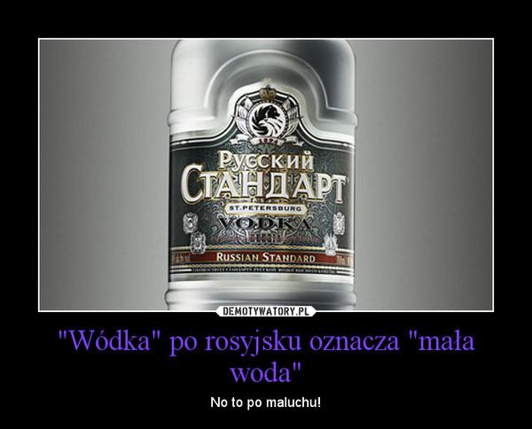 """""""Wódka"""" po rosyjsku oznacza """"mała woda"""" – No to po maluchu!"""