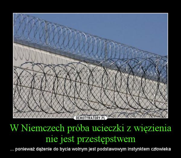 W Niemczech próba ucieczki z więzienia nie jest przestępstwem – ... ponieważ dążenie do bycia wolnym jest podstawowym instynktem człowieka