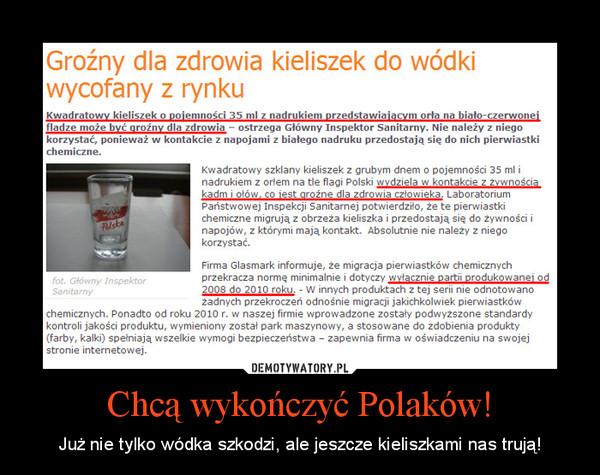 Chcą wykończyć Polaków! – Już nie tylko wódka szkodzi, ale jeszcze kieliszkami nas trują!