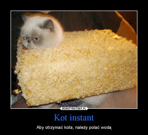 Kot instant – Aby otrzymać kota, należy polać wodą