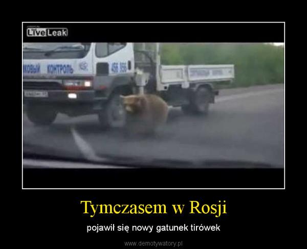 Tymczasem w Rosji – pojawił się nowy gatunek tirówek