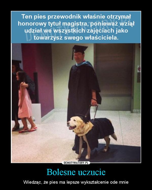 Bolesne uczucie – Wiedząc, że pies ma lepsze wykształcenie ode mnie