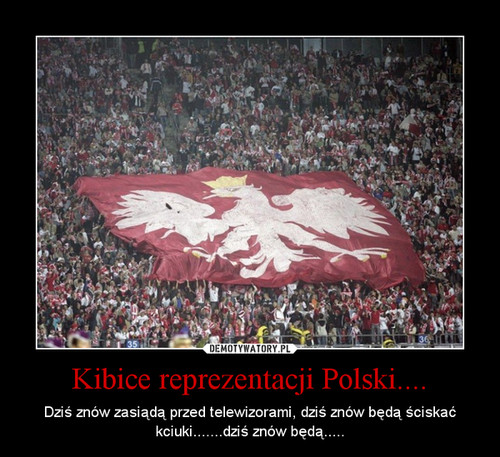 Kibice reprezentacji Polski....