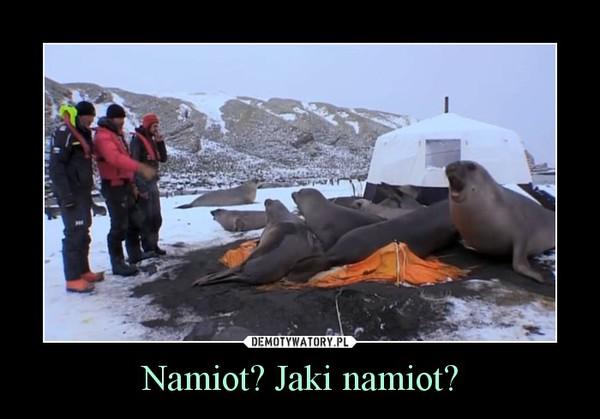 Namiot? Jaki namiot? –