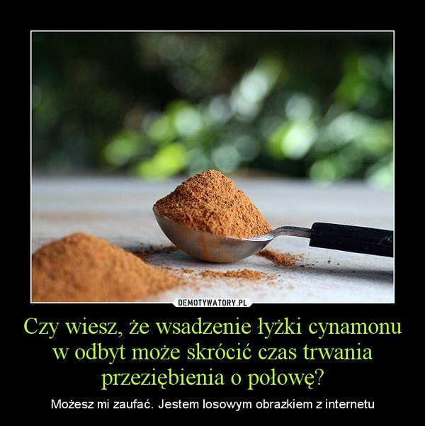 Czy wiesz, że wsadzenie łyżki cynamonu w odbyt może skrócić czas trwania przeziębienia o połowę? – Możesz mi zaufać. Jestem losowym obrazkiem z internetu