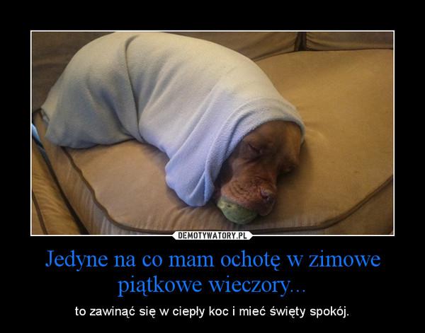 Jedyne na co mam ochotę w zimowe piątkowe wieczory... – to zawinąć się w ciepły koc i mieć święty spokój.
