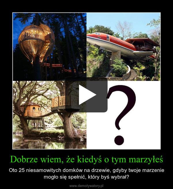 Dobrze wiem, że kiedyś o tym marzyłeś – Oto 25 niesamowitych domków na drzewie, gdyby twoje marzenie mogło się spełnić, który byś wybrał?