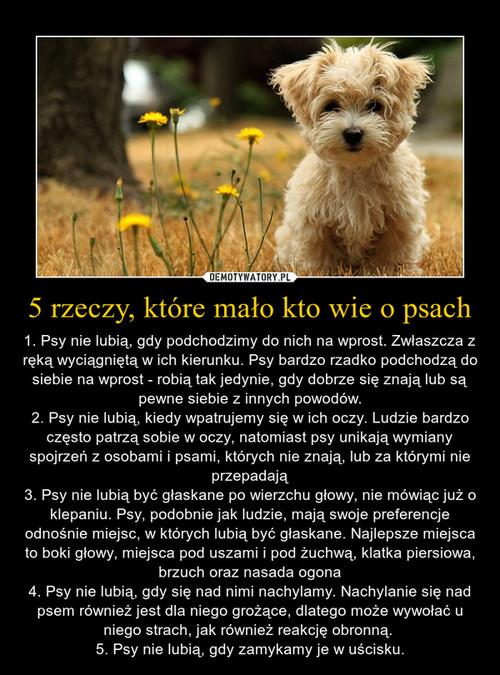 5 rzeczy, które mało kto wie o psach