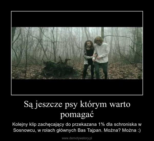 Są jeszcze psy którym warto pomagać – Kolejny klip zachęcający do przekazana 1% dla schroniska w Sosnowcu, w rolach głównych Bas Tajpan. Można? Można :)