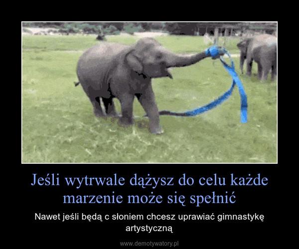 Jeśli wytrwale dążysz do celu każde marzenie może się spełnić – Nawet jeśli będą c słoniem chcesz uprawiać gimnastykę artystyczną