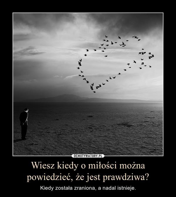 Wiesz kiedy o miłości można powiedzieć, że jest prawdziwa? – Kiedy została zraniona, a nadal istnieje.