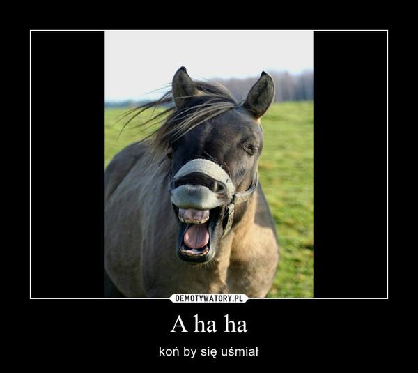 A ha ha – koń by się uśmiał