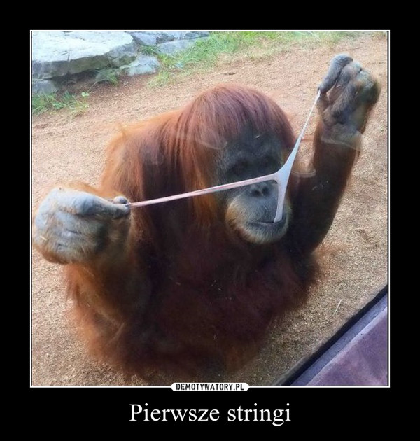 Pierwsze stringi –