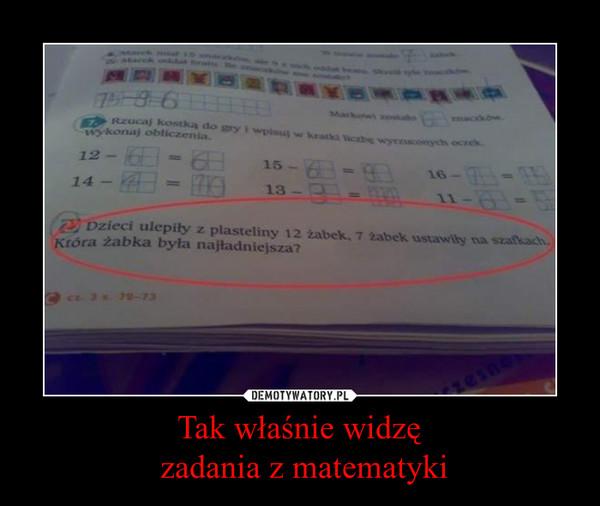 Tak właśnie widzę zadania z matematyki –
