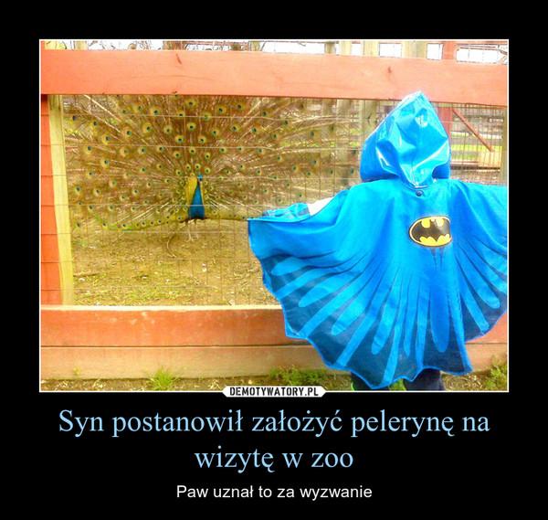 Syn postanowił założyć pelerynę na wizytę w zoo – Paw uznał to za wyzwanie
