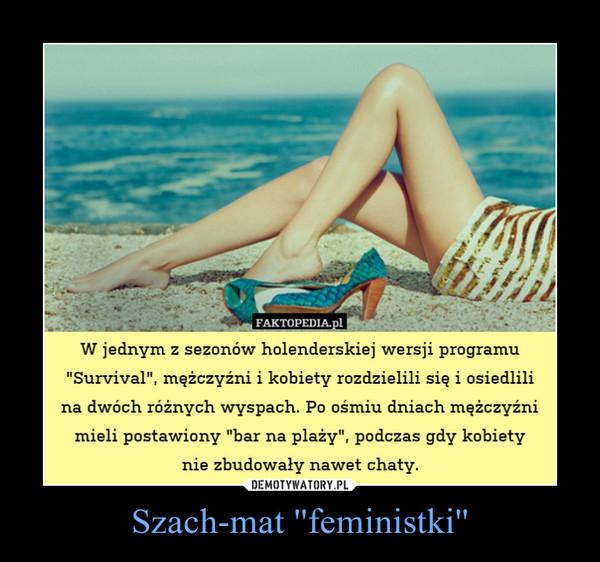 """Szach-mat ''feministki'' –  W jednym z sezonów holenderskiej wersji programu """"Survival"""", mężczyźni i kobiety rozdzielili się i osiedlili na dwóch różnych wyspach. Po ośmiu dniach mężczyźni mieli postawiony """"bar na plaży"""", podczas gdy kobietynie zbudowały nawet chaty."""