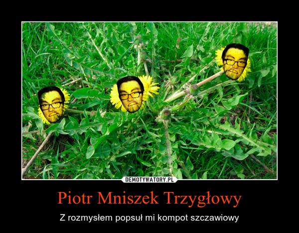 Piotr Mniszek Trzygłowy – Z rozmysłem popsuł mi kompot szczawiowy