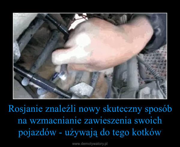 Rosjanie znaleźli nowy skuteczny sposób na wzmacnianie zawieszenia swoich pojazdów - używają do tego kotków –