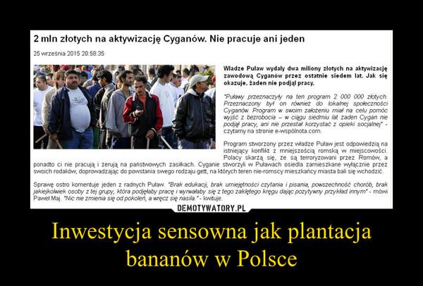 Inwestycja sensowna jak plantacja bananów w Polsce –