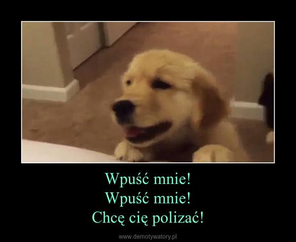 Wpuść mnie!Wpuść mnie!Chcę cię polizać! –