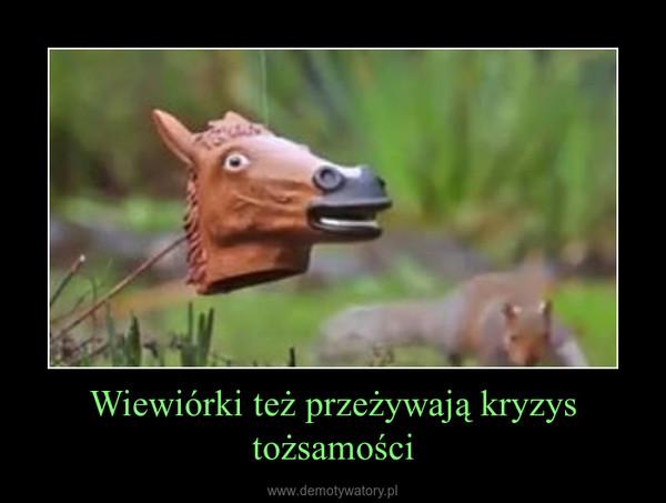 Wiewiórki też przeżywają kryzys tożsamości –
