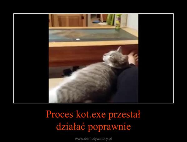 Proces kot.exe przestałdziałać poprawnie –