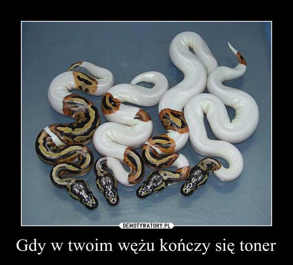 Gdy w twoim wężu kończy się toner –