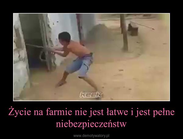 Życie na farmie nie jest łatwe i jest pełne niebezpieczeństw –