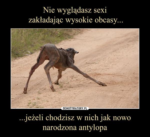 ...jeżeli chodzisz w nich jak nowo narodzona antylopa –