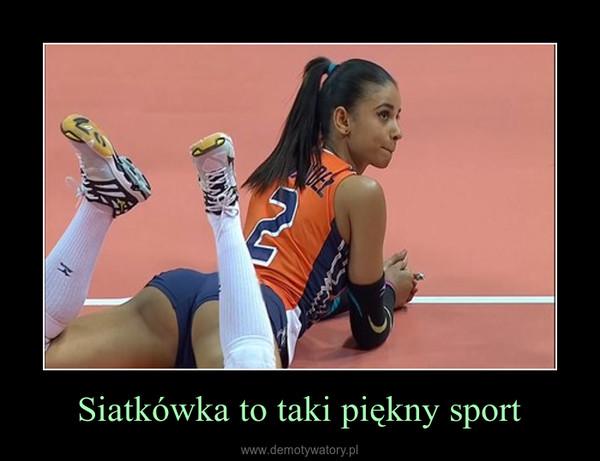 Siatkówka to taki piękny sport –