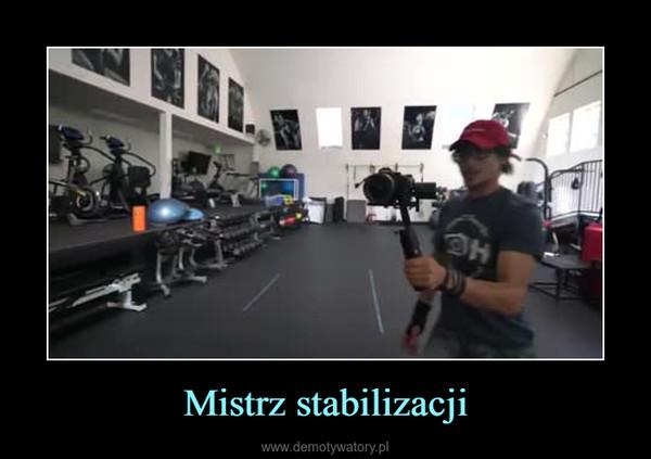 Mistrz stabilizacji –