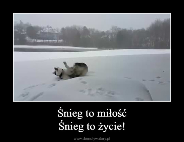 Śnieg to miłośćŚnieg to życie! –