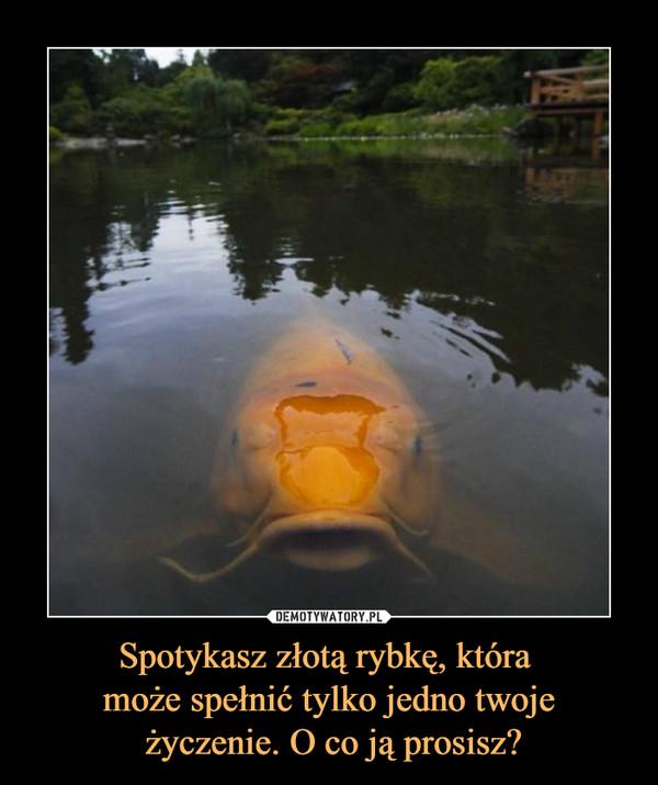 Spotykasz złotą rybkę, która może spełnić tylko jedno twoje życzenie. O co ją prosisz? –