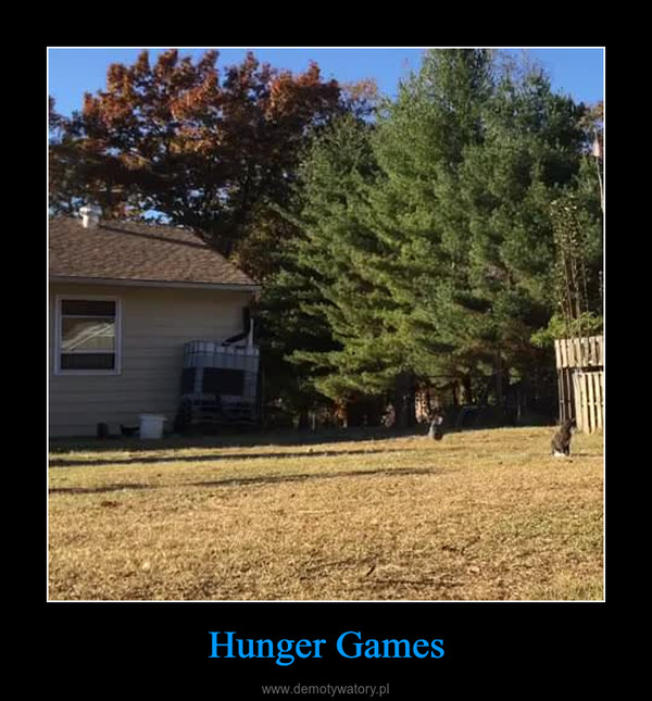 Hunger Games –